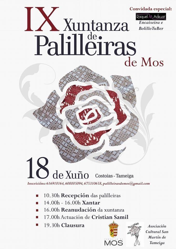 Sanitarios portátiles alquilados para la IX Xuntanza de Palilleiras de Mos, Pontevedra